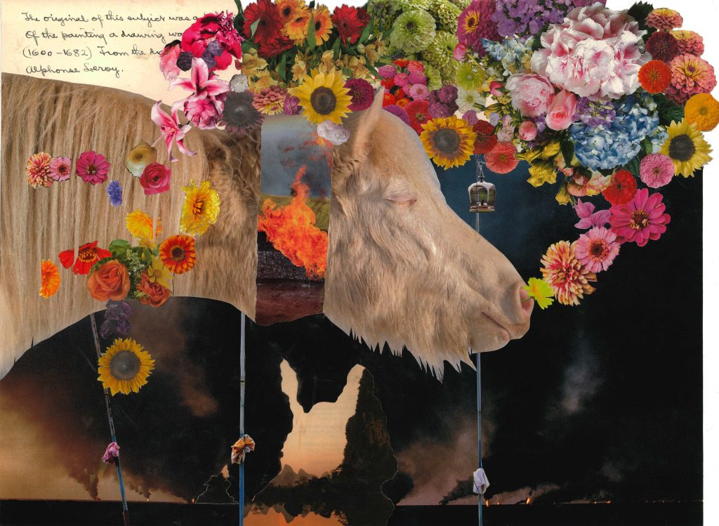 collage image of a white pony. The pony's head is separated from it's neck by an image of fire. A cloud of flowers is emerging from the pony's nose and floating above its head and over its back.