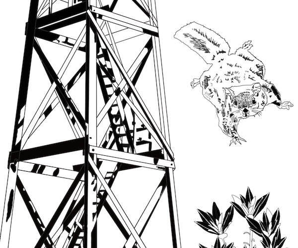 black and white drawing with first ranger tower to the left and flying squirrel to the right, fire flowers at the base